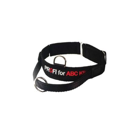 Collare velcro, maniglia e sgancio di sicurezza. 47-52 cm per cani