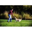 Palline unite con impugnatura CHUCKIT ULTRA DUO TUG per cani