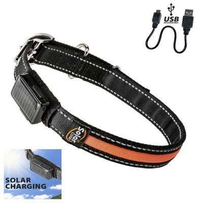 Collare nylon LED. ricarica solare e USB per cani