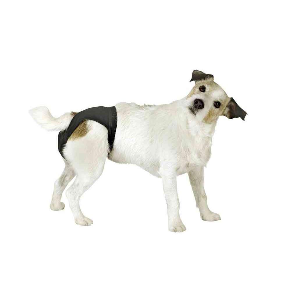 Mutandina igienica Pant Dog per cani