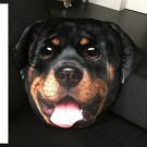 Pet Faces muso Rottweiler Cuscino  gadget cani