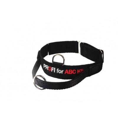 Collare velcro, maniglia e sgancio di sicurezza. 50-60cm per cani