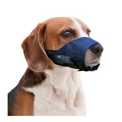 Museruola nylon regolabile per cani