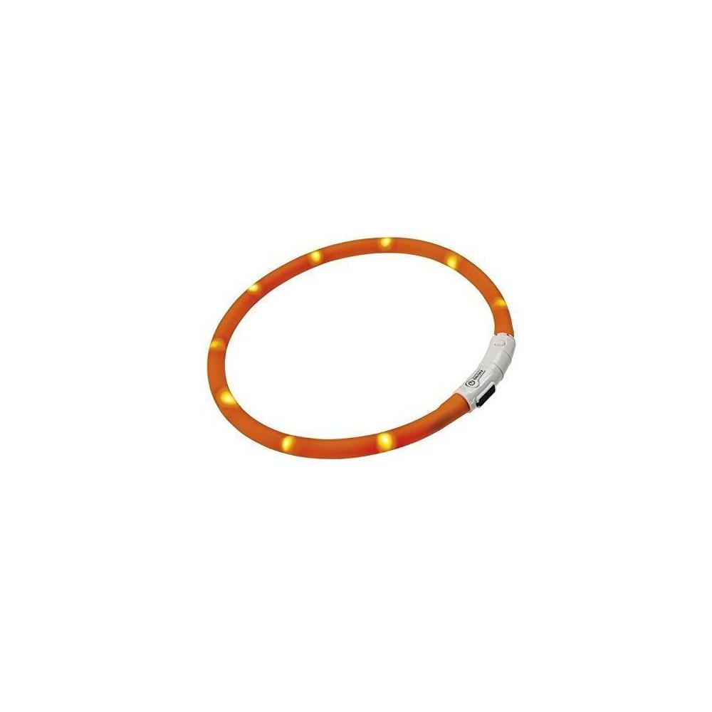 Collare LED ricarica USB colori assortiti per cani