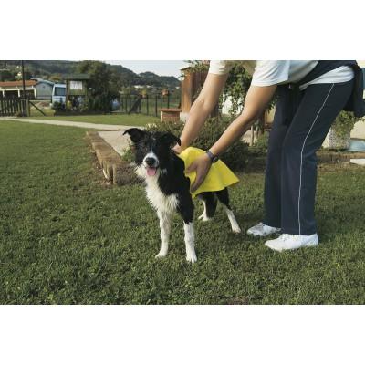 Telo assorbente 70 x h 50 cm per cani