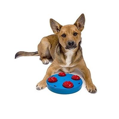 Gioco attivazione mentale DOG PUZZLE per cani