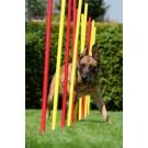Slalom Agility Professionale 12 paletti Topmast per cani