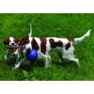 Pallone da calcio, non si sgonfia, con Corda per cani
