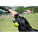 Gioco Stick da lancio Dog Comet per cani