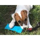 Salamotto Galleggiante tug con maniglia per cani