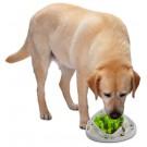 Gioco attivazione mentale AFP LABIRINTO per cani