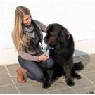 Cardatore denti fitti 15x10 cm per cani
