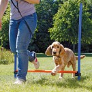 Salto singolo per agility dog Trixie per cani